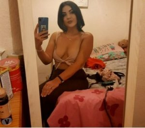 Leonille asian shemale hookup in Morgantown